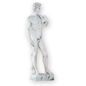 DAVID 1